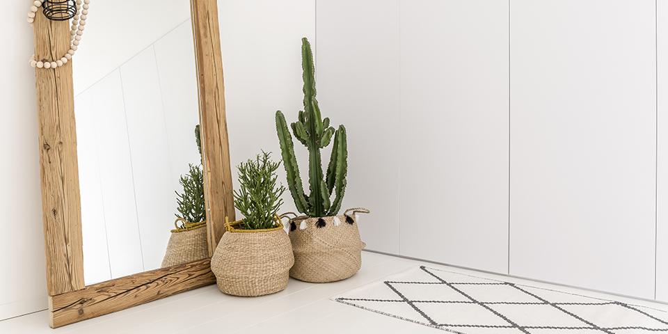 VID_site_imagem_0005_espelhos_cactus